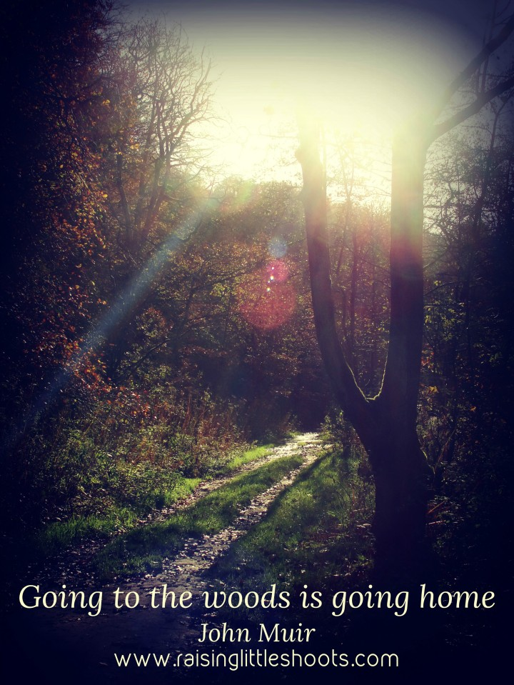 going to the woods