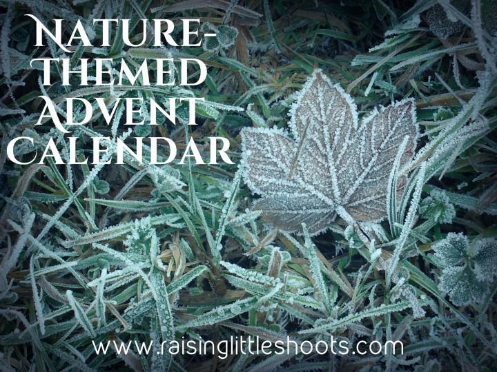 Nature Advent Calendar.jpg