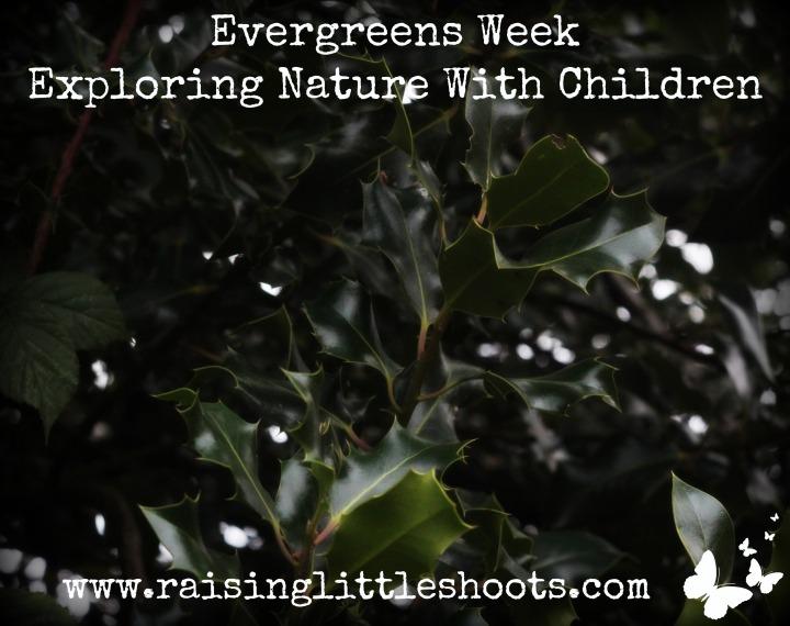 evergreens-week