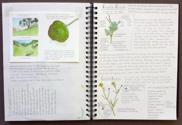 Journal 4.jpg