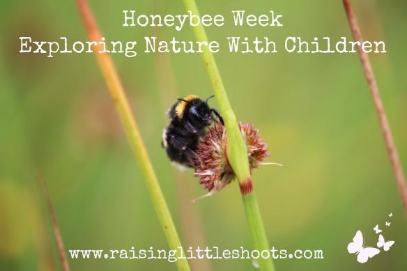 Honeybee week.jpg