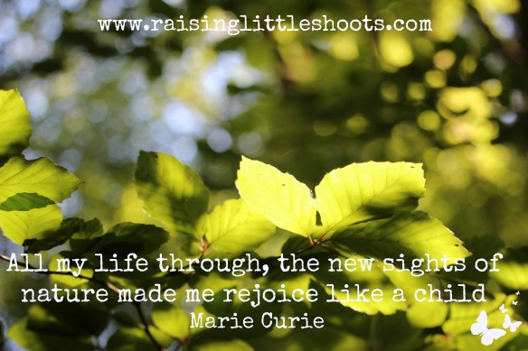 marie curie quote.jpg