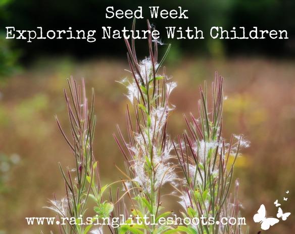 Seed Week)