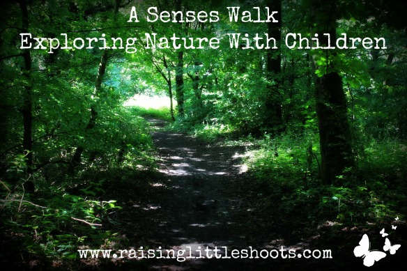 Senses walk.jpg