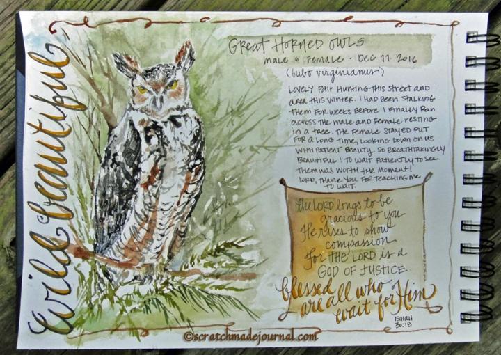 great horned owl ©scratchmadejournal